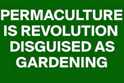 7/27 Teach-In – Decolonizing Permaculture: Permaculture for the People!